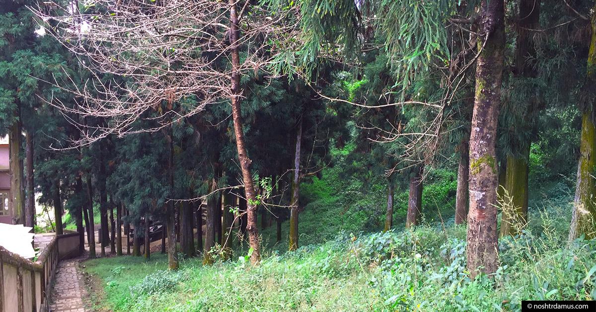 Kohima War Cemetary - Walking down Officers Hill